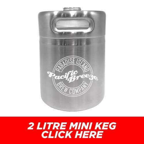 Low Price and Quick Turnaround 2 Litre Mini Stainless Steel Keg